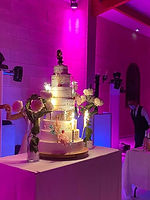 Wedding cake nude cake.jpg