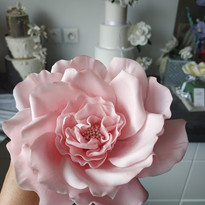 Rose sauvage - Fleur en gumpaste
