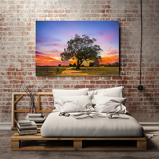 Outback Tree Stretched Canvas