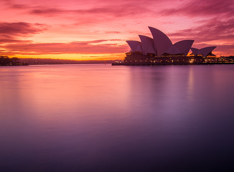 Sydney Harbour Pink Sunrise