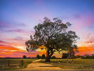 Mildura, Victoria Australia