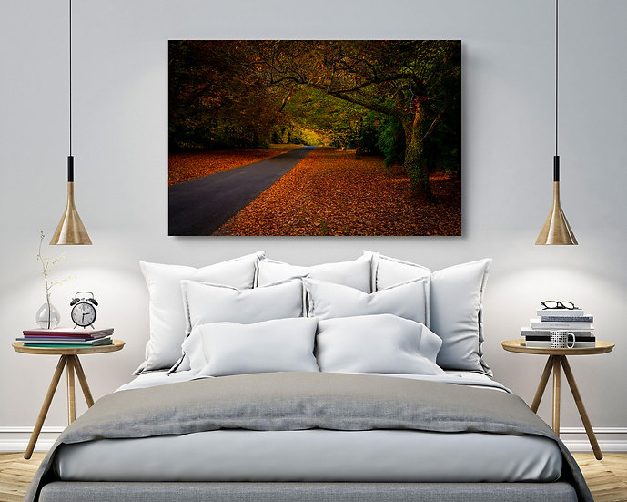 Mount Wilson Stretched Canvas