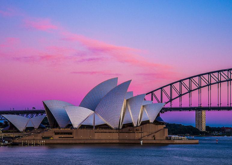 Sydney Harbour Pink Print
