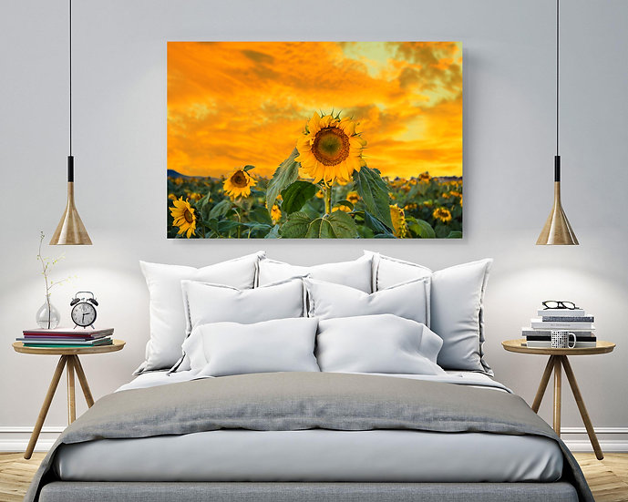 Sunflowers Stretched Canvas