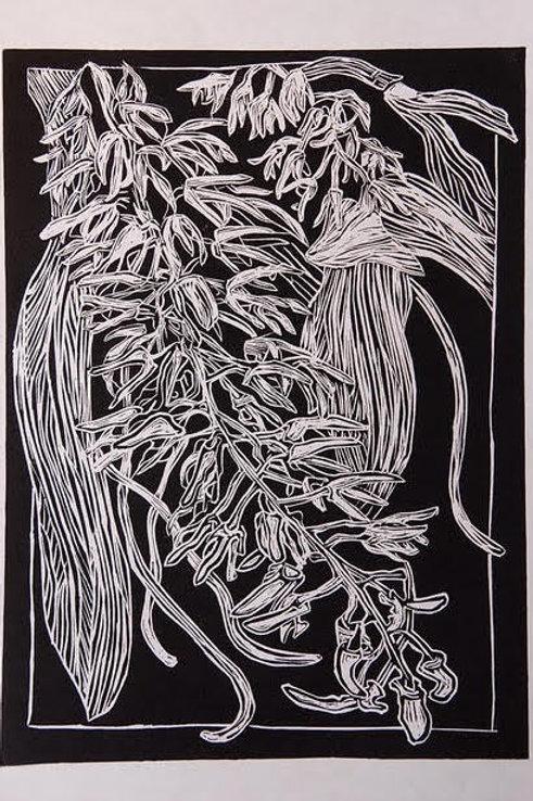 Dendrobium - Karen Sedaitis