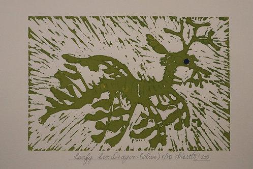 Leafy Sea Dragon -  Keith Coleman