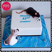 Gluten Free 21st cake with icing pet rats