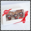 Gluten free Christmas Gingerbread Gift Pack C