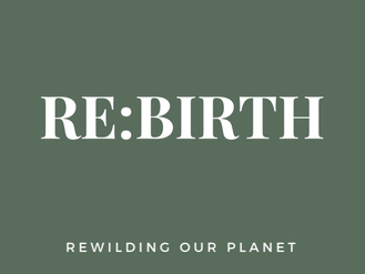 Re-Birth: Changing our buying patterns