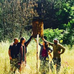 Log hives: Honey bee rehabilitation
