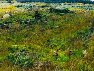 The Caminho Da Dao, walking our watershed
