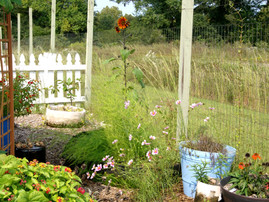 Once Upon Tending Your Autumn Vegetable Garden