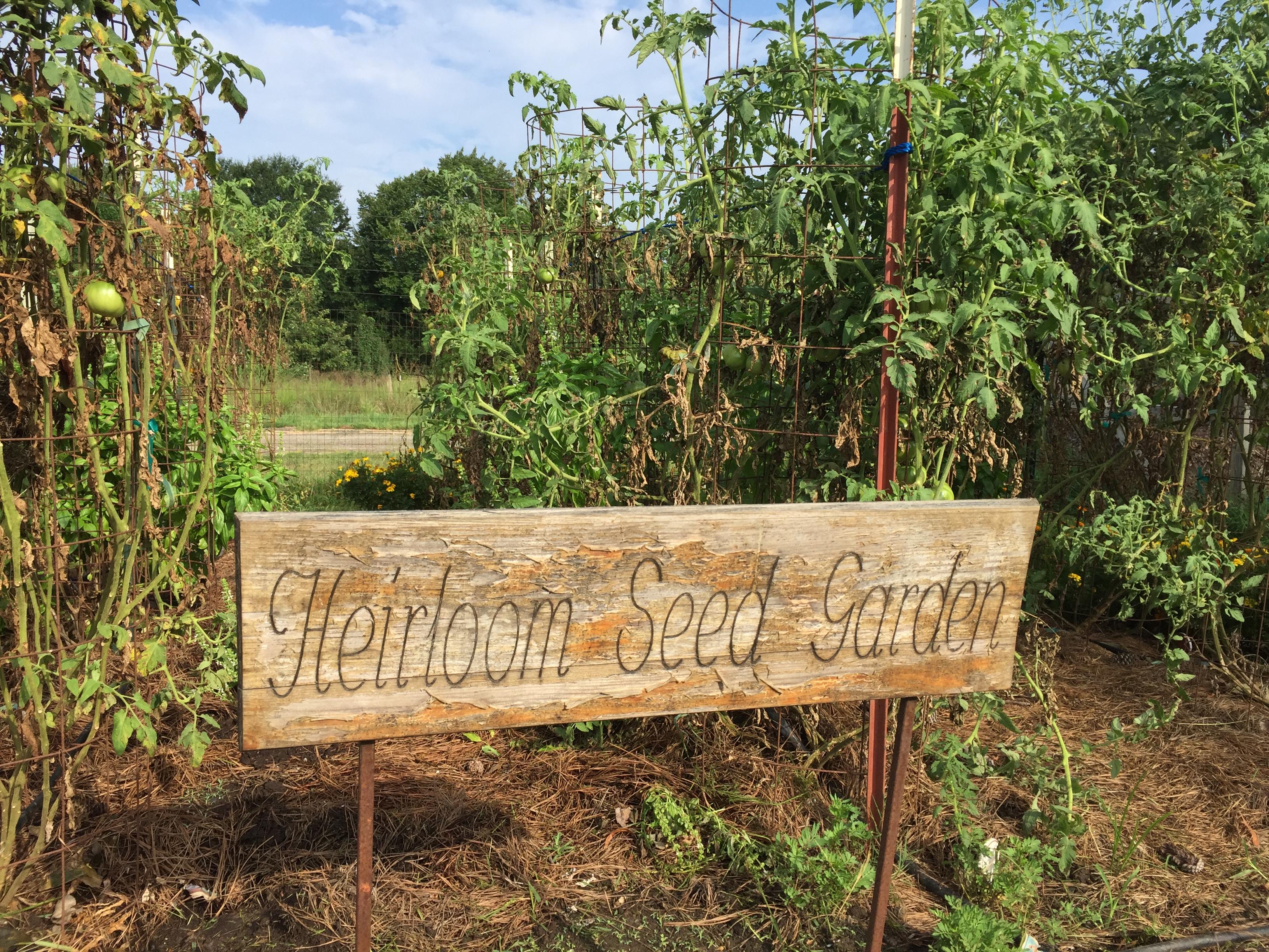 Heirloom Seed Garden