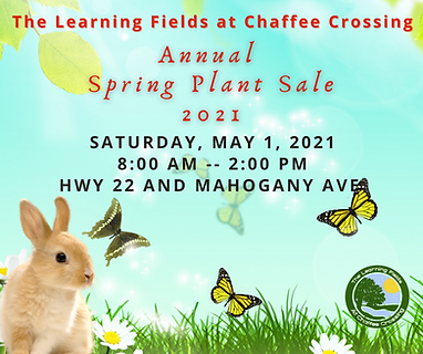Cute bunny, butterflies and text with May 1 2021 Spring Plant Sale