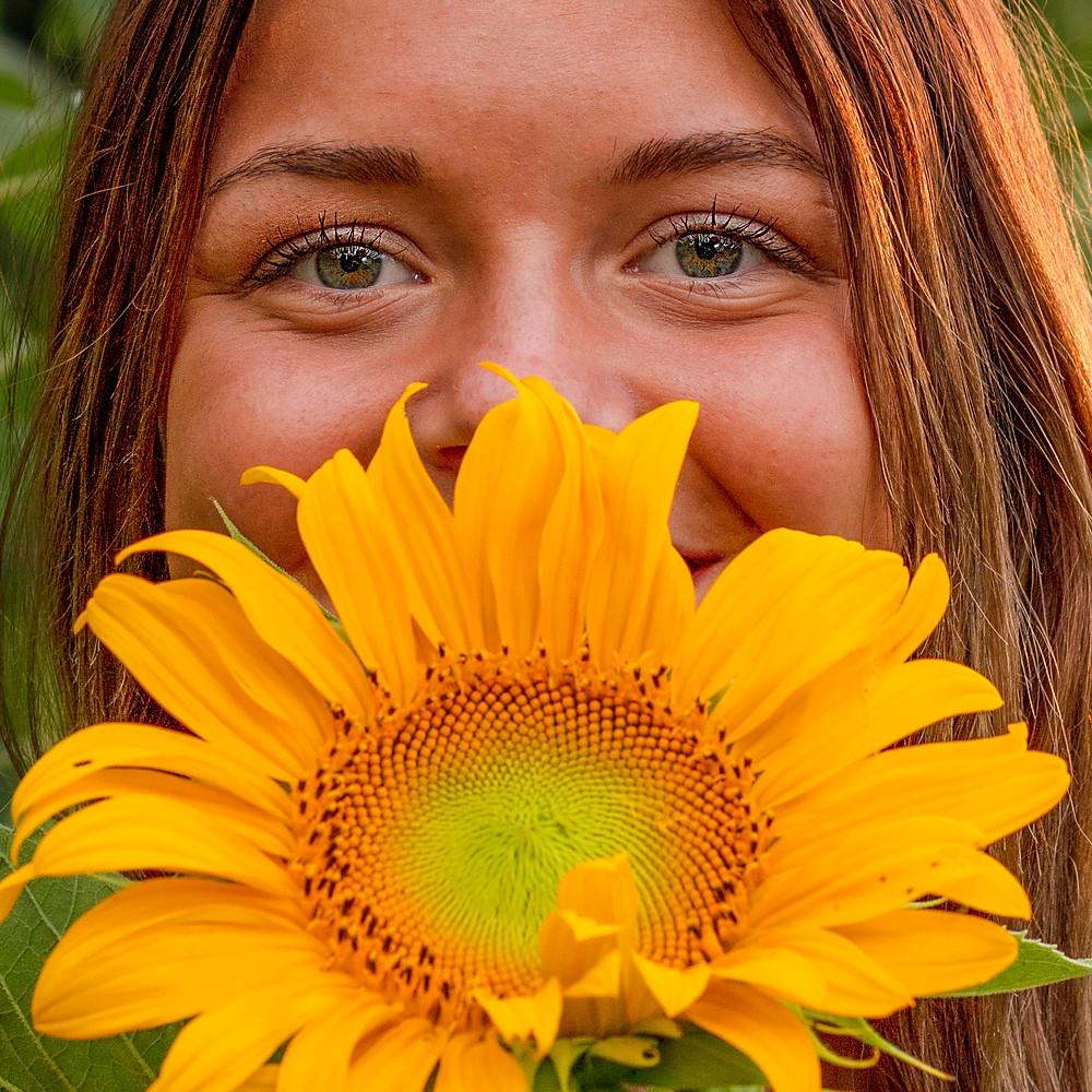 Bella Sunflowers