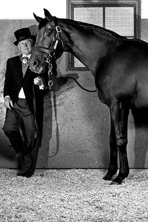 Horses-4-of-14_edited_edited_edited.jpg