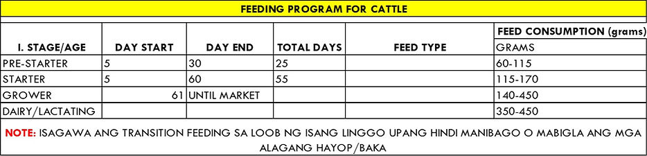 feeding cattle.jpg