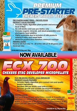rabbit fcx