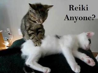 Discover Reiki!