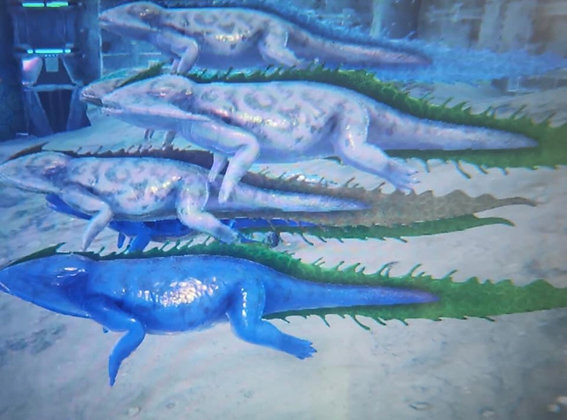 Good stats Diplocaulus ( official xbox pvp )