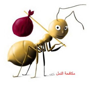 مكافحة النمل | ابادة النمل بالقاهرة | مكافحة حشرات