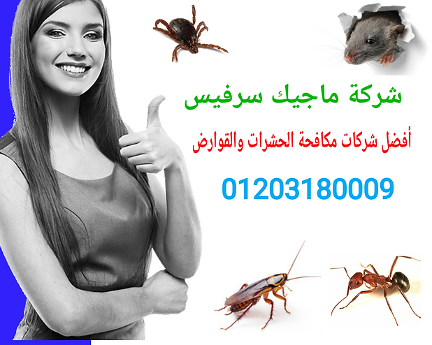 poster_٢٠٢١-٠٢-٠٩-١٠٣٤٣٥.png