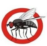 الذباب وانتشار الأمراض
