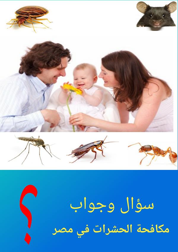 اسئلة عن مكافحة الحشرات والقوارض