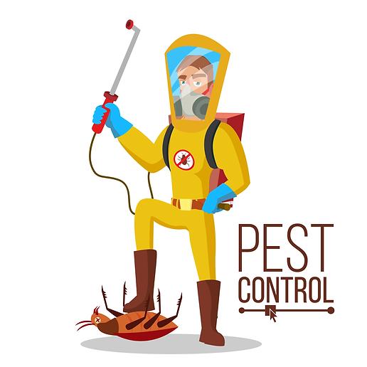 مكافحة حشرات مصر