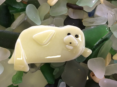 Glass Seal Pup