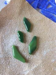Fuchshia leaves.JPG