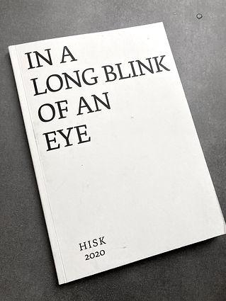 In a Long Blink of an Eye, critical volume, HISK 2020
