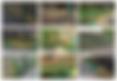 Screen Shot 2020-01-29 at 09.42.34.png