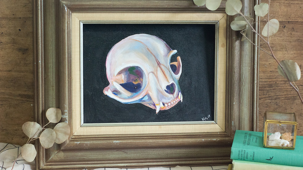 Cat Skull - Art Print
