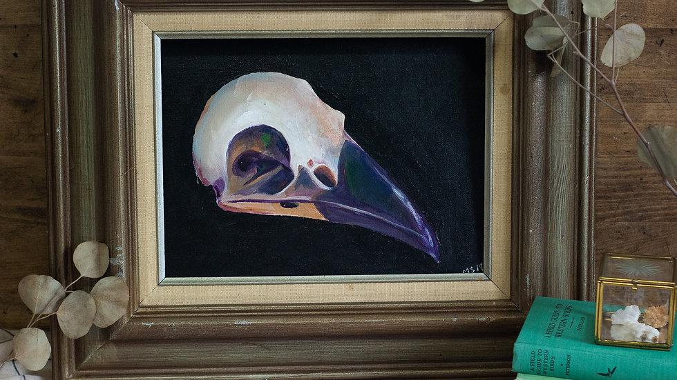 Raven Skull Art Print