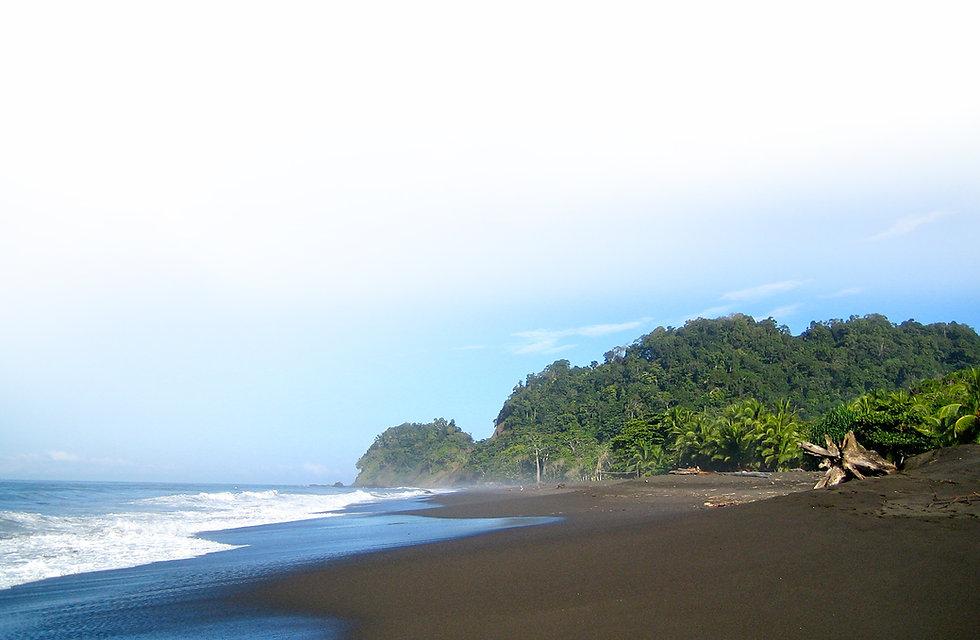 footer-ocean.jpg