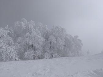 スキーバカンス