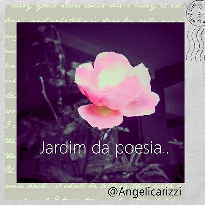 Postcard 31