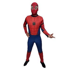 Homem Aranha luxo.jpg