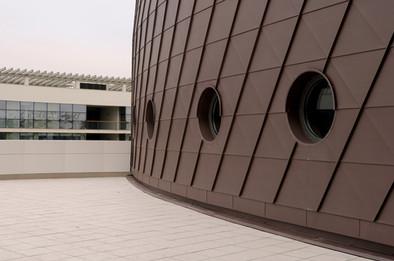 Фасада титан цинк VMZINC