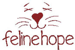 feline hope.jpg