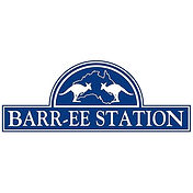 3paw Barr-ee Station.jpg