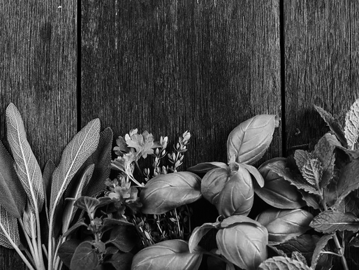Benefícios da utilização de plantas aromáticas