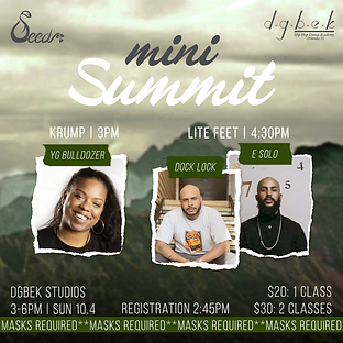 _INSTA - SEED Mini Summit flyer 10-4-20.