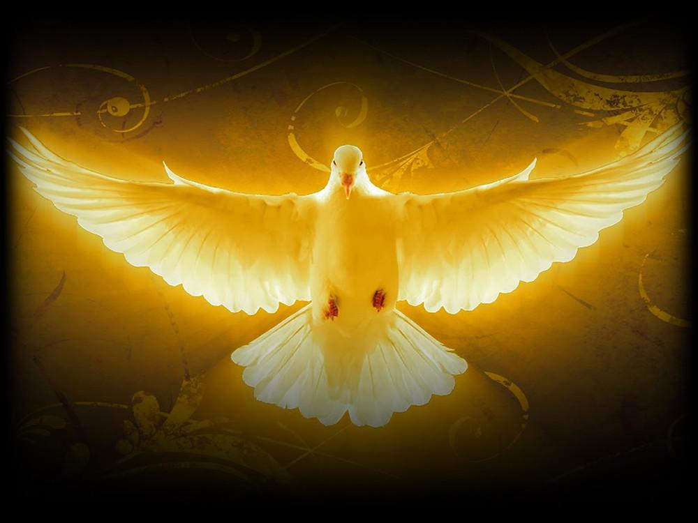 The Holy Spirit. Gibraltar Catholic Youth.