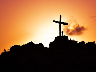 The Shadow of His Wings: Reflection on the Twenty-Second Sunday in Ordinary Time