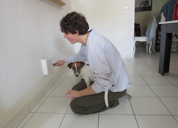 Des chiens indépendants ou presque 4