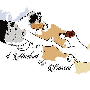 logo austral et boréal