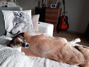 Nagg et Guenji sur le canapé