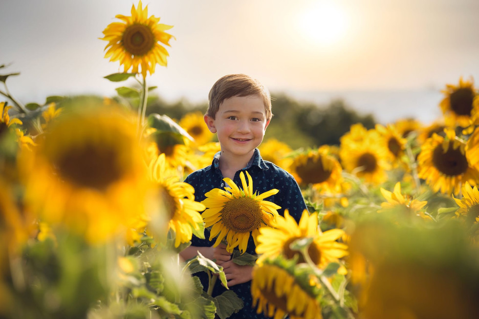 Sunflower Photography Sessions { Richardson Farms Monticello KY} Beulah Blooms